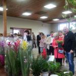 Mieszkańcy Borowa integrowali się na kiermaszu roślin